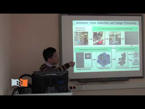 "Lecture ""Cryo-Electron Microscopy Method in Structure Biology"" by Ping Zhu in SibFU"